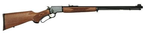 marlin 22 lever action.jpg